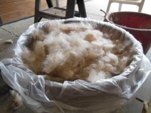 Prime fleece - yes sir, yes sir, one bag full