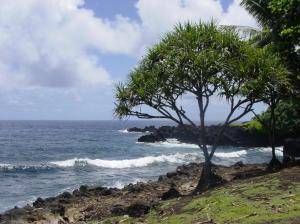 We all went to Maui in 2004, where I found my favorite place in the world. This one.