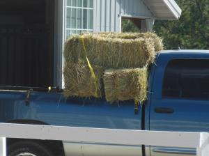 Truck and Hay