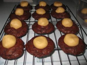 ChocolatePeanutButterBallCookies